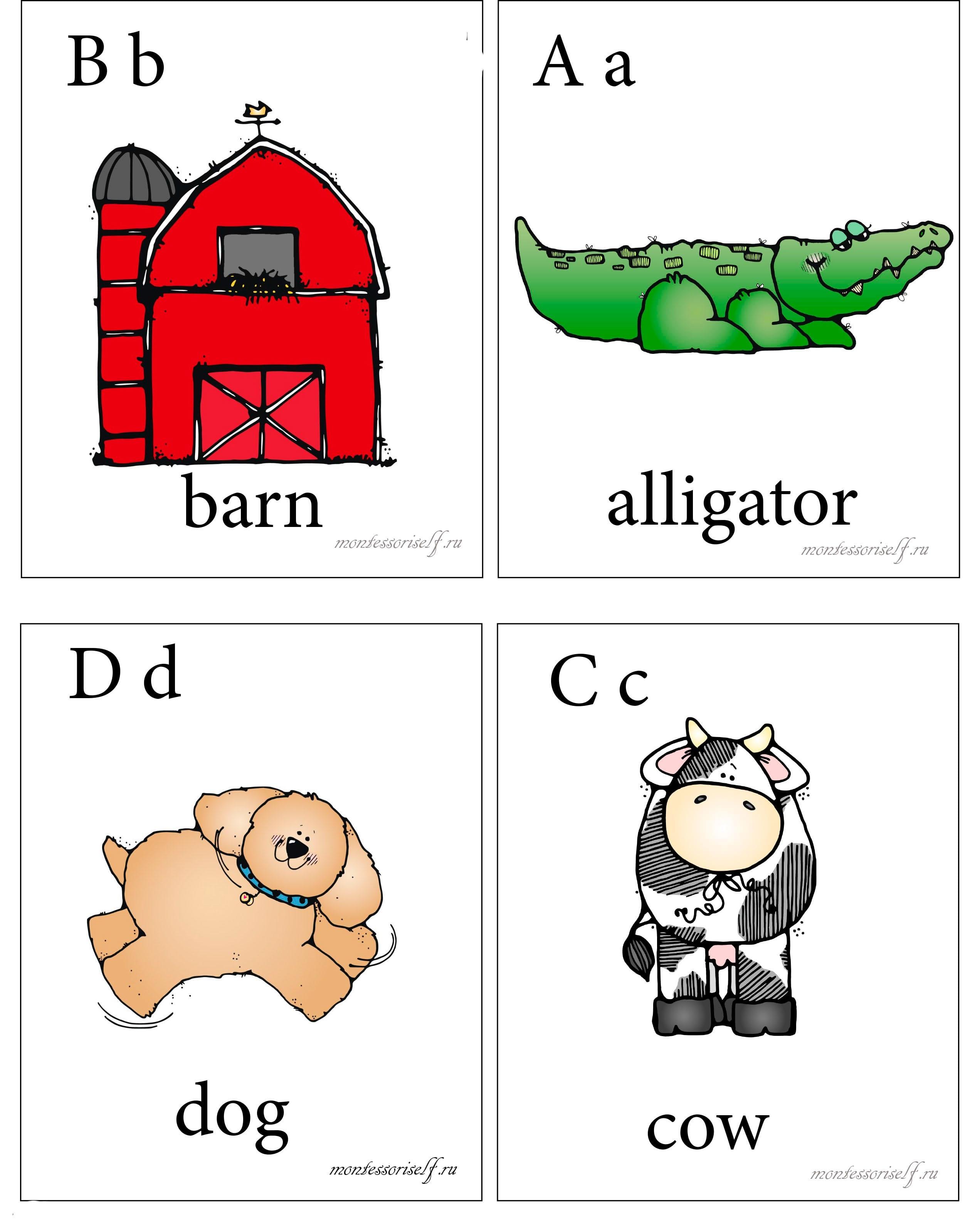 Карточки по английскому алфавиту с картинками 13