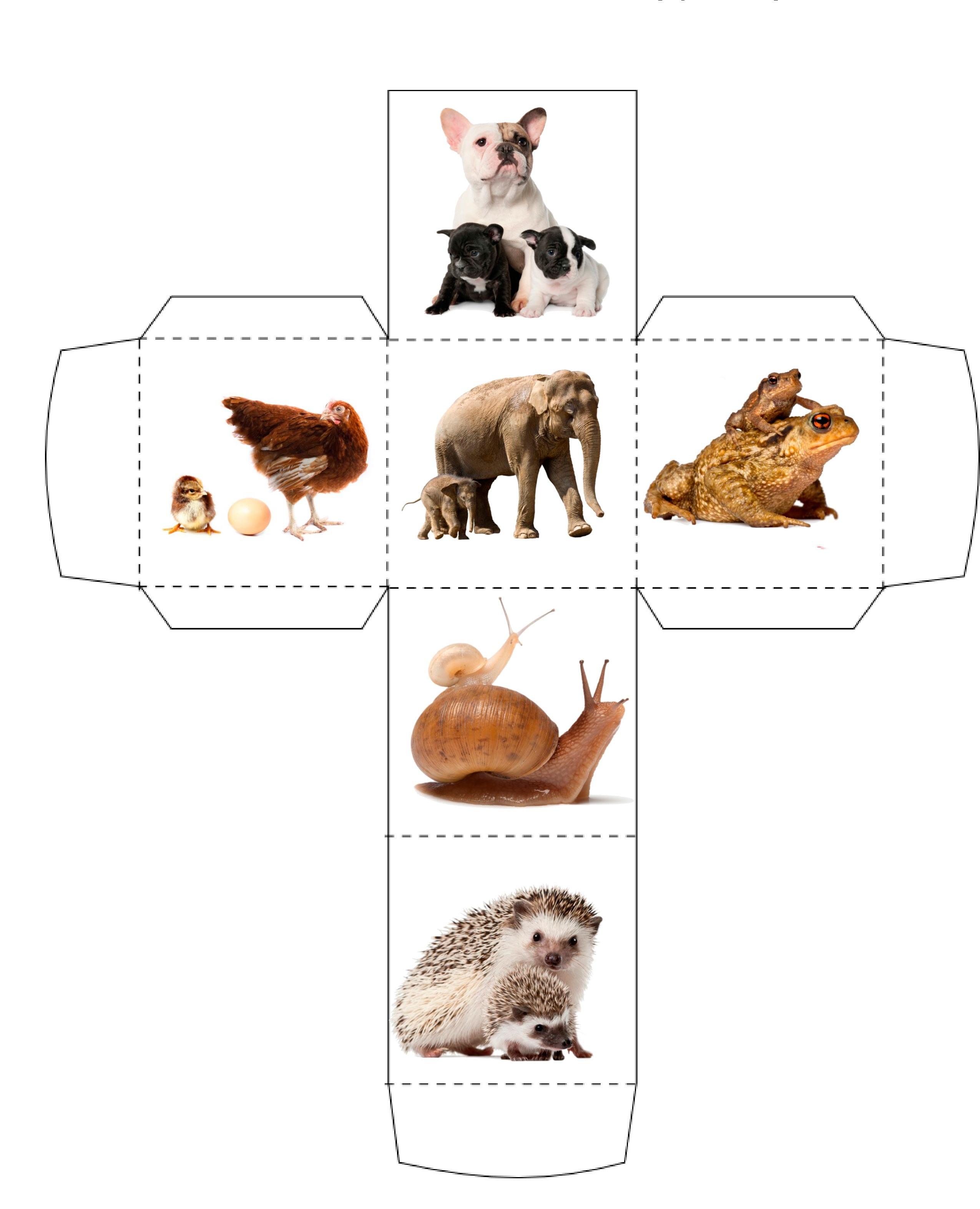 кубик дети животных