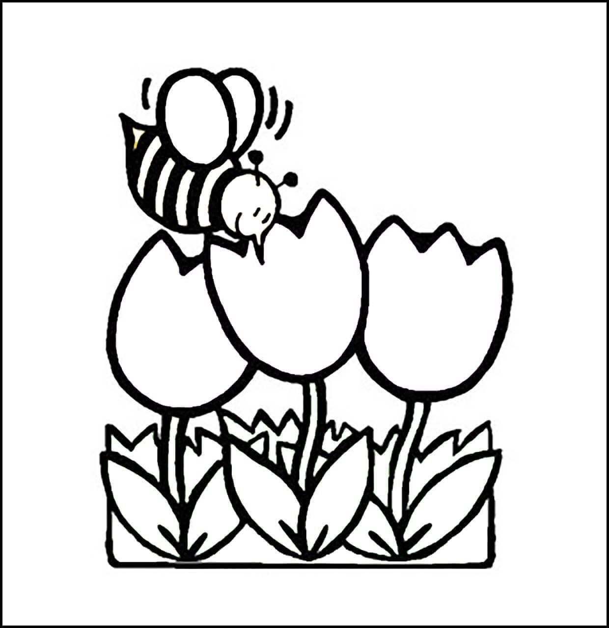 Раскраска пчелка