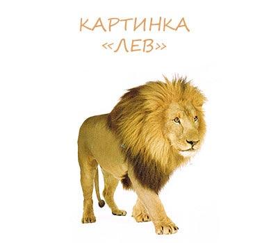 картинка лев