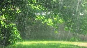 дождь фотография 11