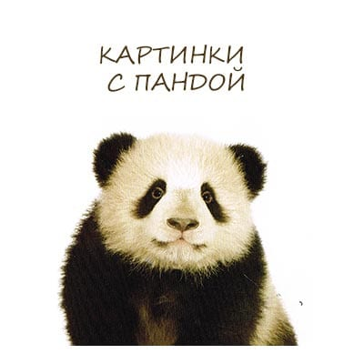 картинки с пандой