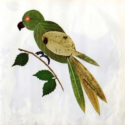 Попугай из листьев