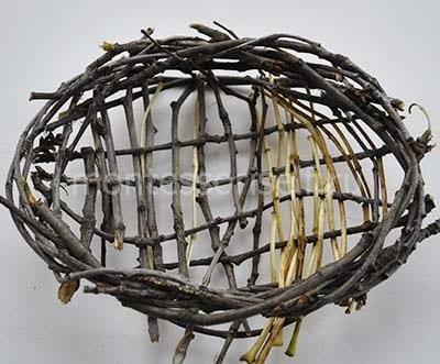 Гнездо из веток