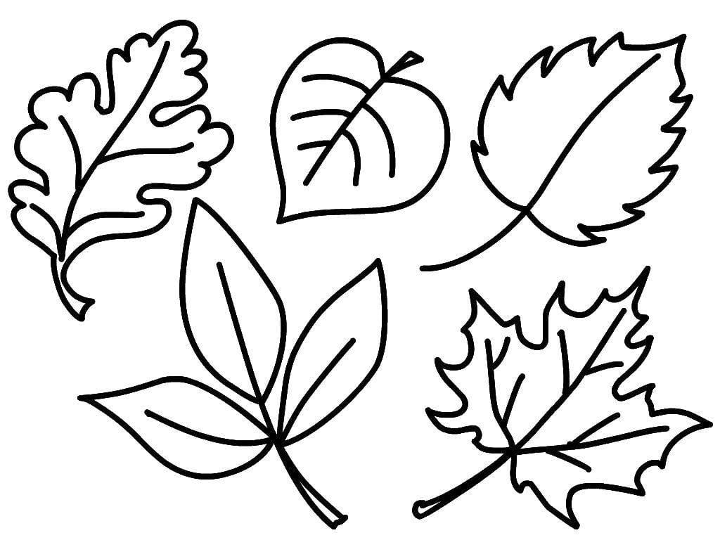 Осенние листики (разной формы)