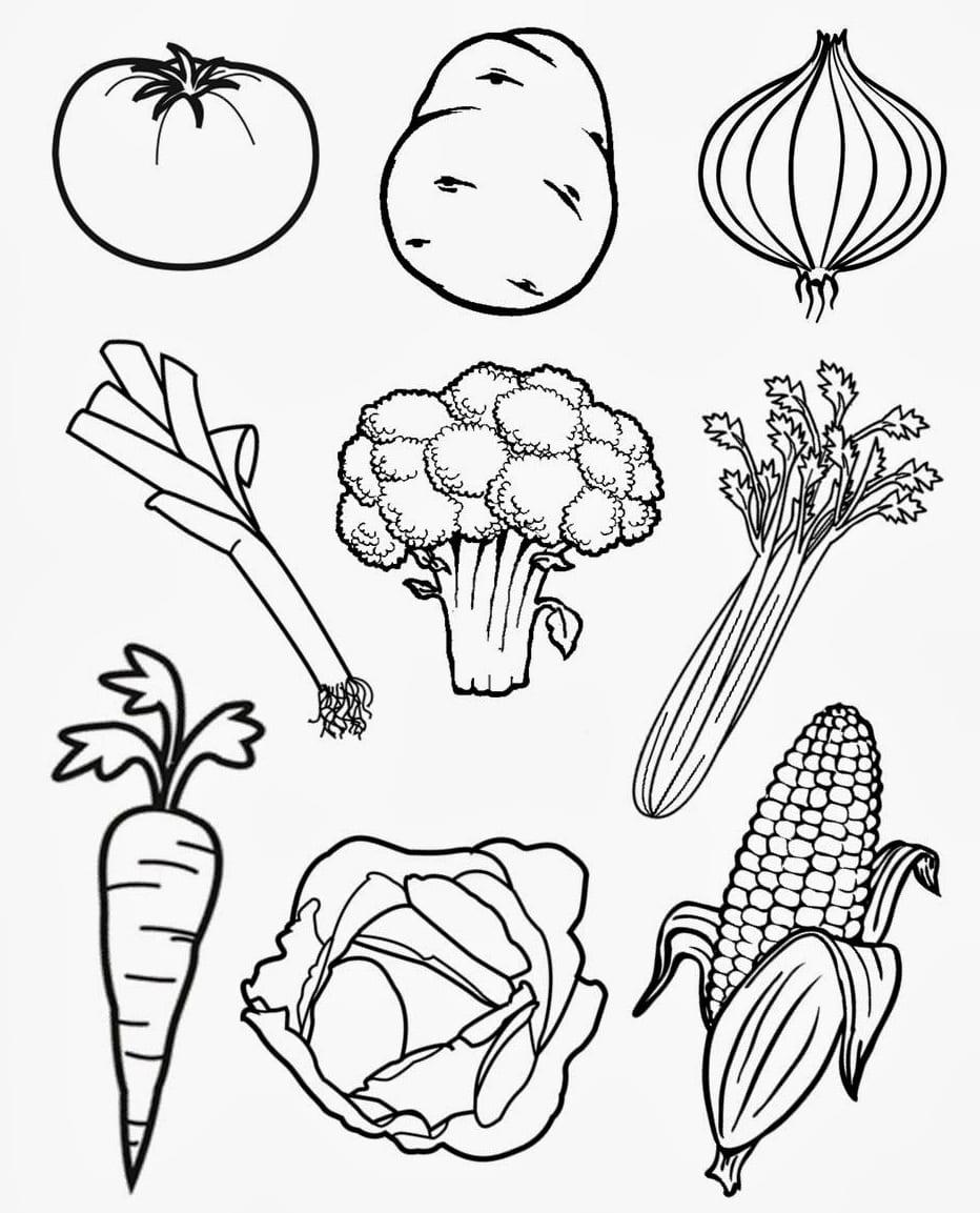 Раскраска - дары осени овощи