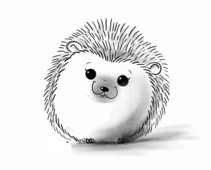 hedgehog pattern 4