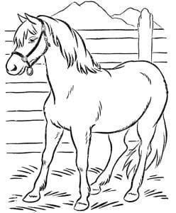 раскраска лошадь 6