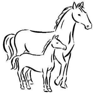раскраска лошадь с жеребенком