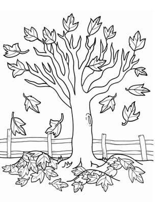 Листья в раскрасках