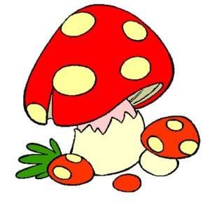 Картинки грибов для раскраски детям