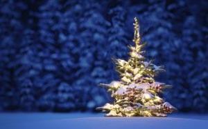 Новогодняя елка картинка для детей 7