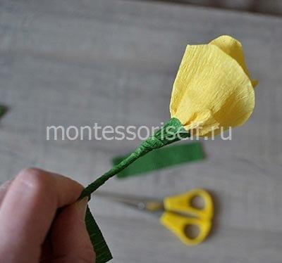 Цветок и стебелек