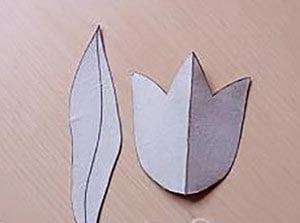 Шаблон для вырезания и основа будущего тюльпана