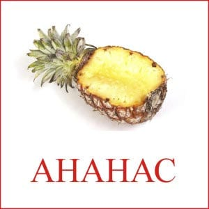 Pineapple picture for children 2