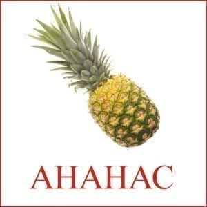 Pineapple picture for children 1