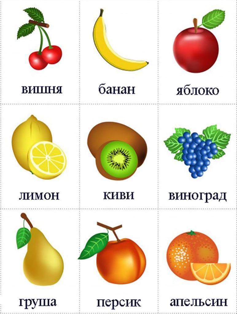 Овощи картинки для детей цветные скачать бесплатно - b