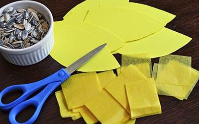 Вырезаем лепестки и квадратики