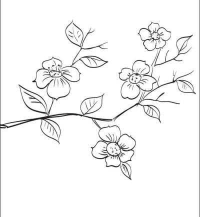 Цветы на ветке