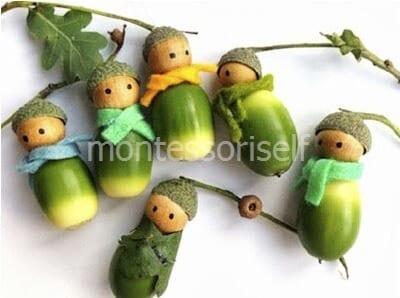 Куколки из желудей