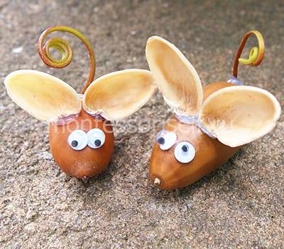Мышки из желудя с ушками
