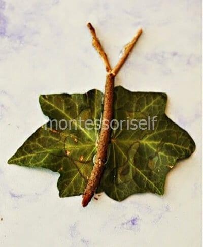Бабочка из зеленых листьев