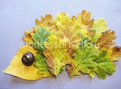 Аппликация ежик из листьев