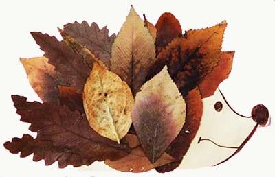 Ежик из листьев