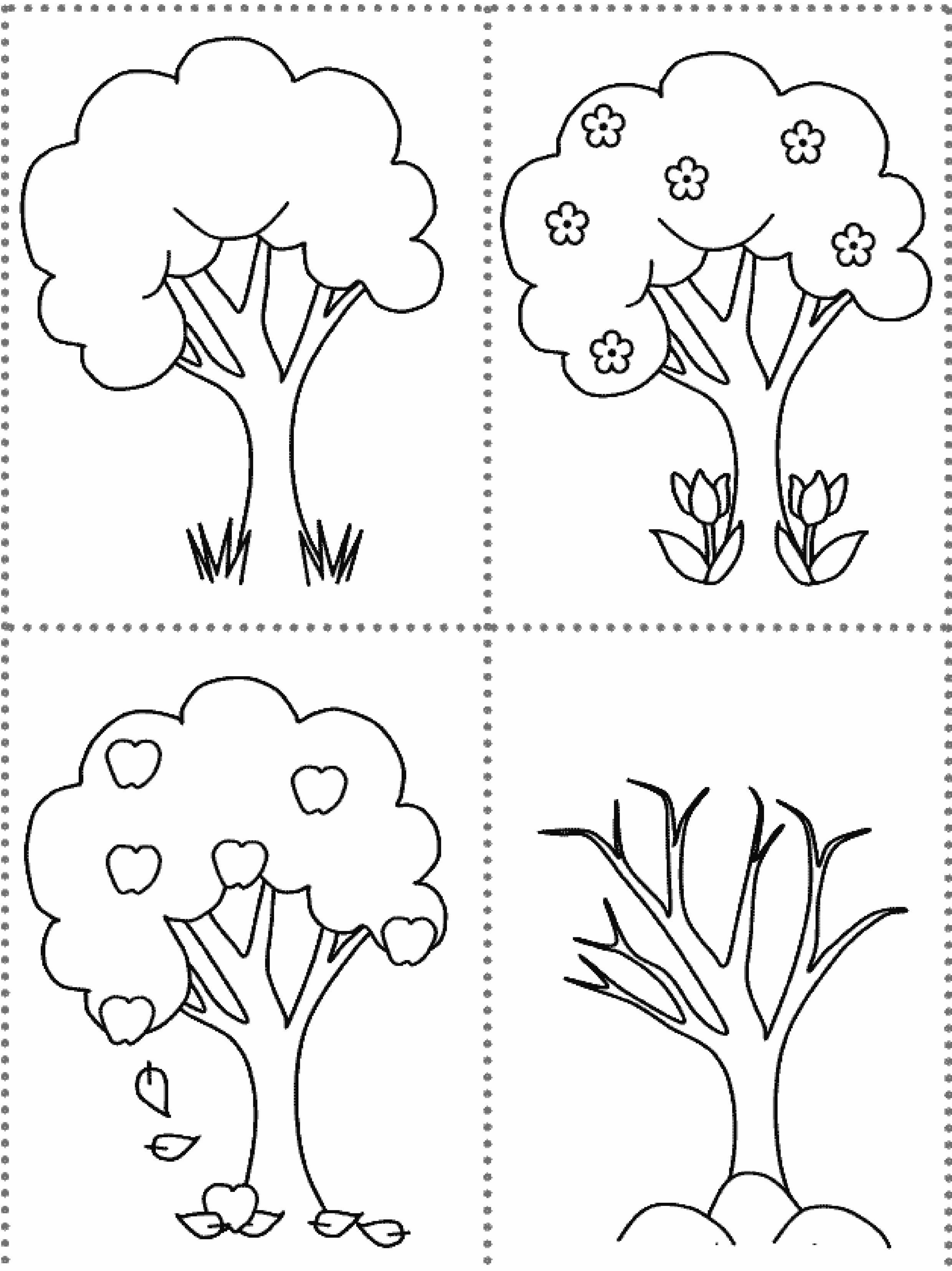 Раскраска дерево в разные времена года