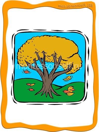 Осеннее дерево