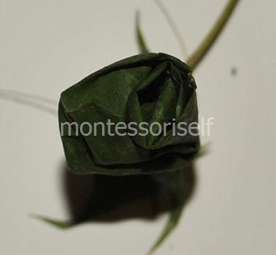 Бутон из листьев