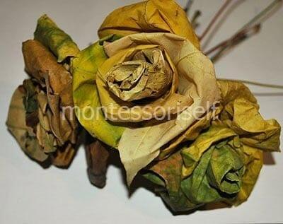 Букет кленовых роз