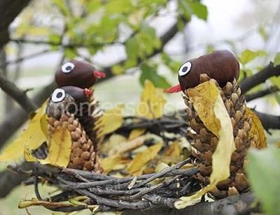 Гнездо с птицами из природных материалов