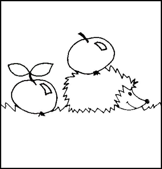 Раскраска ежик с двумя яблоками