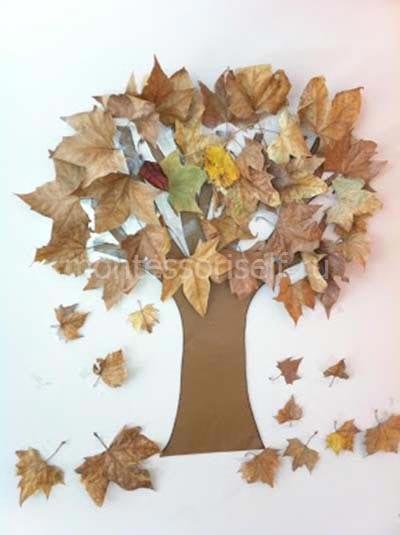 """Аппликация из сушеных листьев """"дерево"""""""