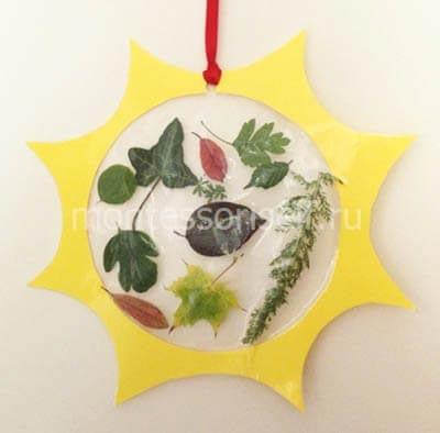 Настенный гербарий в детский сад