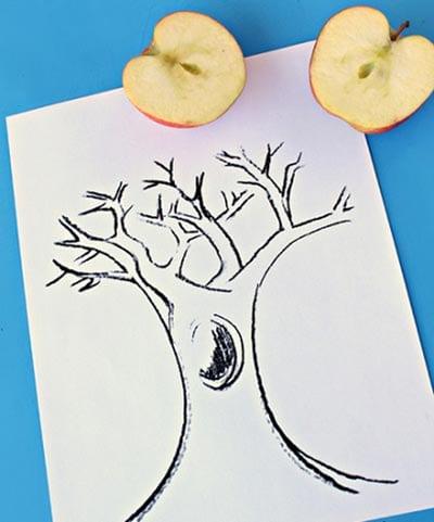 Рисуем контур дерева
