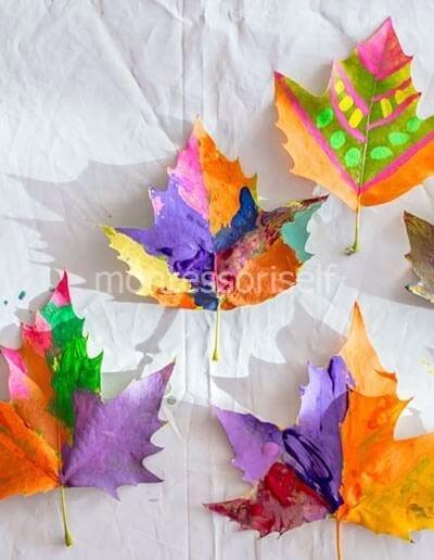 Раскрашенные листья