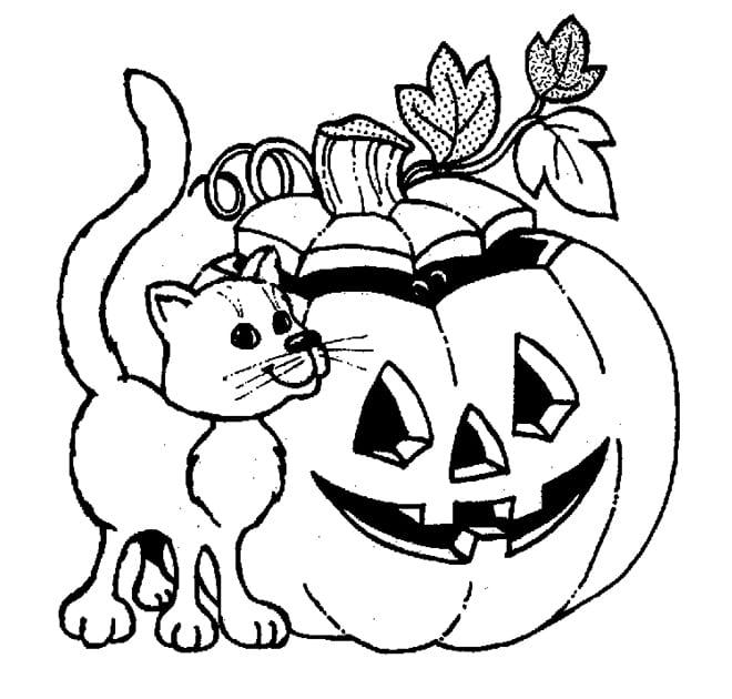 Раскраска кошка и тыква