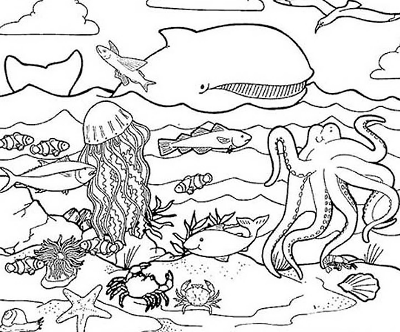 Жители моря раскраска