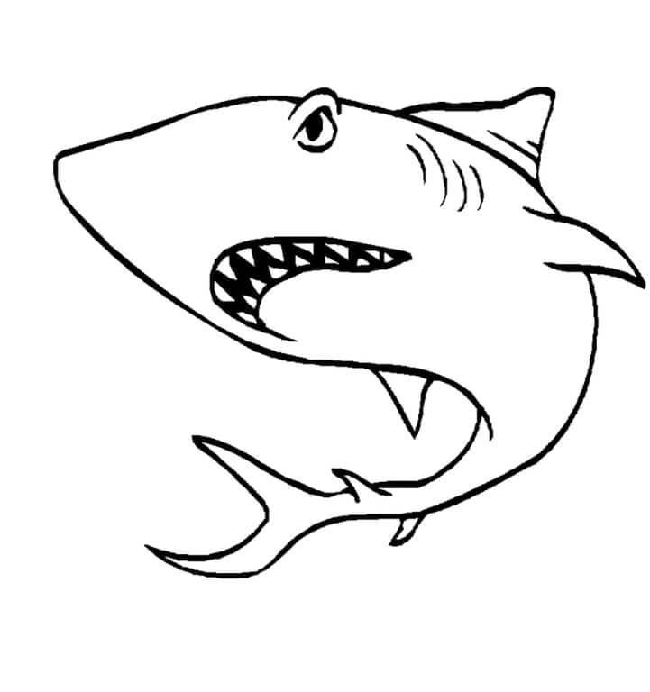 Акула раскраска