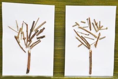 Аппликация дерево из сухих веток