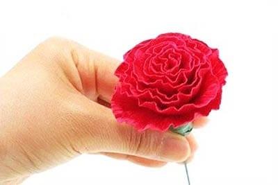 Цветок к 23 февраля