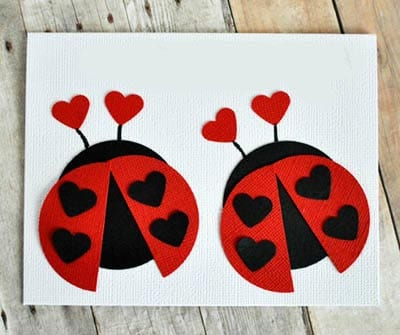 Loving Ladybirds