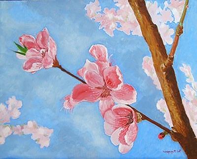 Цветение яблони картинка 2
