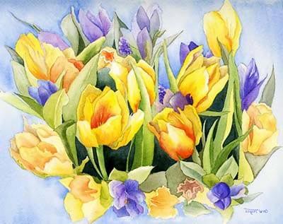 Цветение тюльпанов картинка