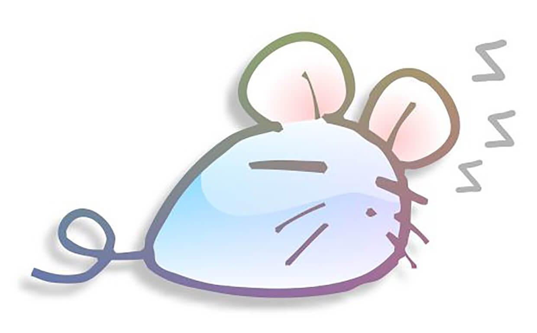 Спящая мышка картинка