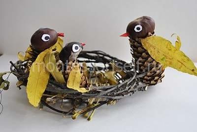 Птичья семья в гнезде