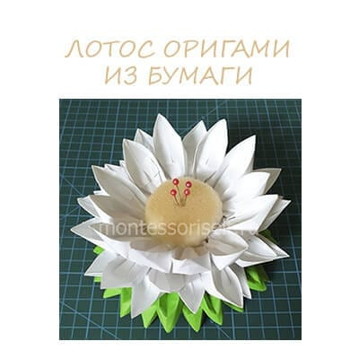 Оригами лотос из бумаги