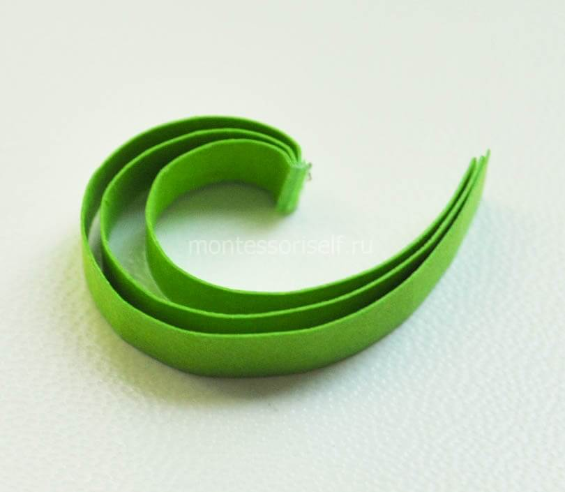 Зеленые завитки